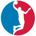 API-Basketball API