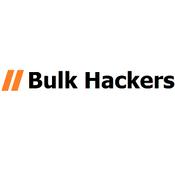 Bulk Hackers Quotes